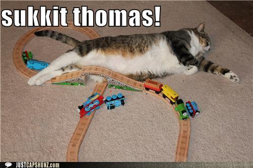 funny-captions-sukkit-thomas