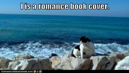 funny-pictures-i-is-a-romance-book-cover