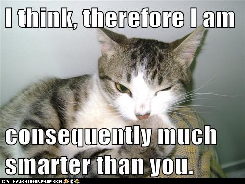 cat think therefore I am lol